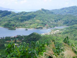 Histoire de Vanille, 100% Biologique - île de Tahaa, Tahiti #6